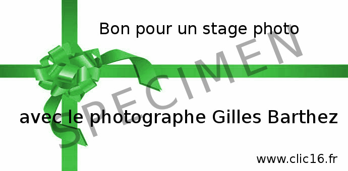 bon cheque cadeau stage photo
